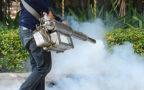 Disinfestazione: operatori di Messinaservizi stasera attivi al Centro città contro blatte, zanzare tigri, pappataci e pulci.