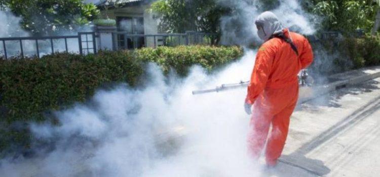 Disinfestazione: Messinaservizi Bene Comune dal 6 all'8 ottobre eseguirà il 3 ciclo contro zanzare tigre, zanzare, blatte nella zona Nord della città.