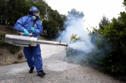 Disinfestazione:Messinaservizi avvia servizio contro insetti nocivi e zanzare nel Centro città da domani all'uno luglio